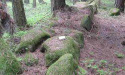 Menhiry Javorníku - Kamenná řada Dobrš